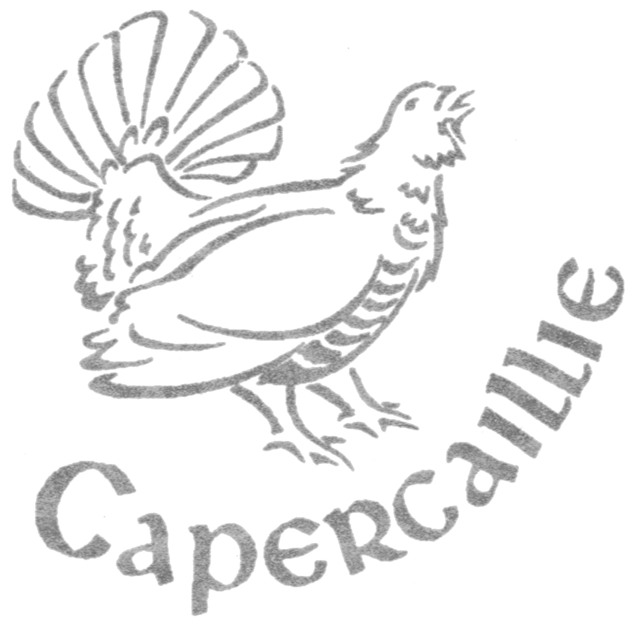 Capercaillie Travel Ltd